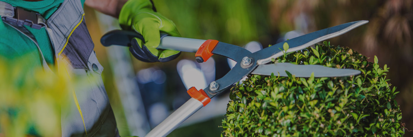 landscapers-and-gardeners-banner